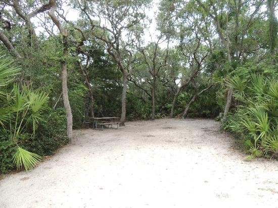North Beach Camp Resort - St Augustine, FL - RV Parks