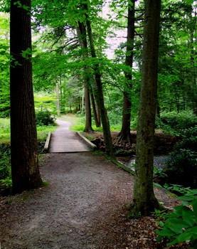 Kooser State Park - Somerset, PA - Pennsylvania State Parks