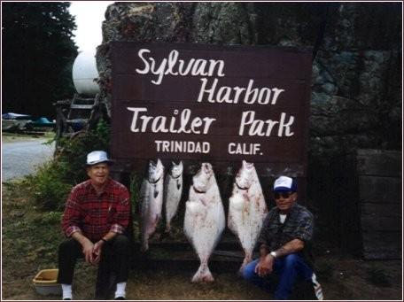 Sylvan Harbor Rv Park - Trinidad, CA - RV Parks