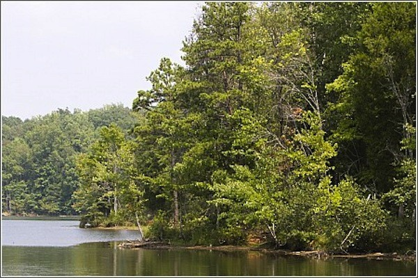 Croft State Park - Spartanburg, SC - South Carolina State Parks