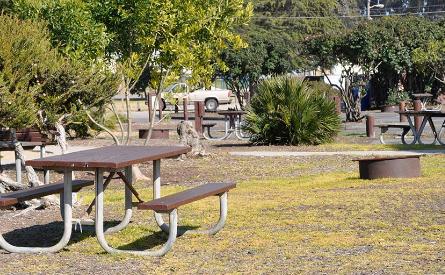 Oceano Park and Campground - Oceano, CA - County / City Parks