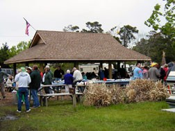 Cape Woods Campgrounds - Buxton, NC - RV Parks