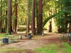 Smithwoods Rv Park - Felton, CA - RV Parks