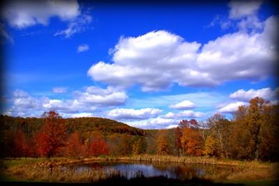 Voorhees State Park - Glen Gardner, NJ - New Jersey State Parks
