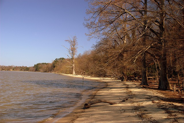 Chippokes Plantation State Park - Surry, VA - Virginia State Parks
