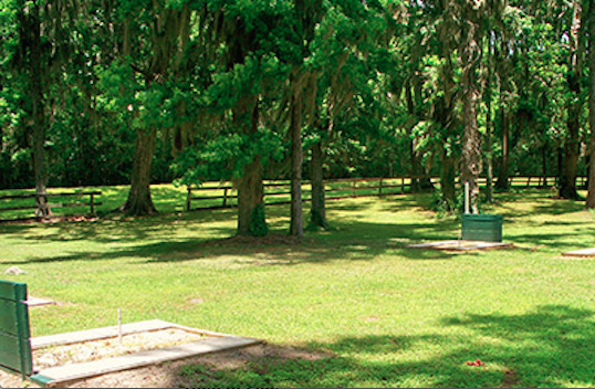 Ocala North RV Resort - Reddick, FL - RV Parks