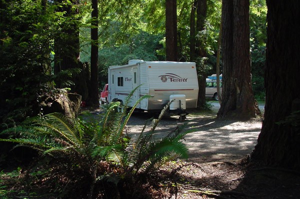 Emerald Forest Of Trinidad - Trinidad, CA - RV Parks