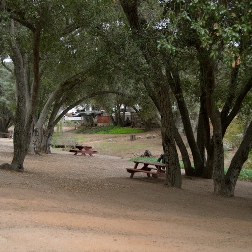 Lilac Oaks Campground - Valley Center, CA - RV Parks