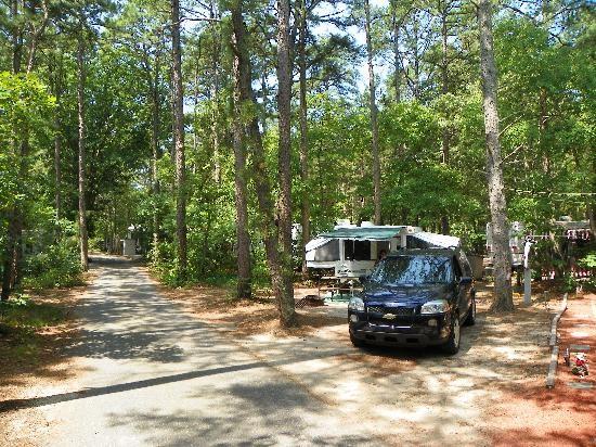 Sea Grove Camping Resort - Ocean View, NJ - RV Parks
