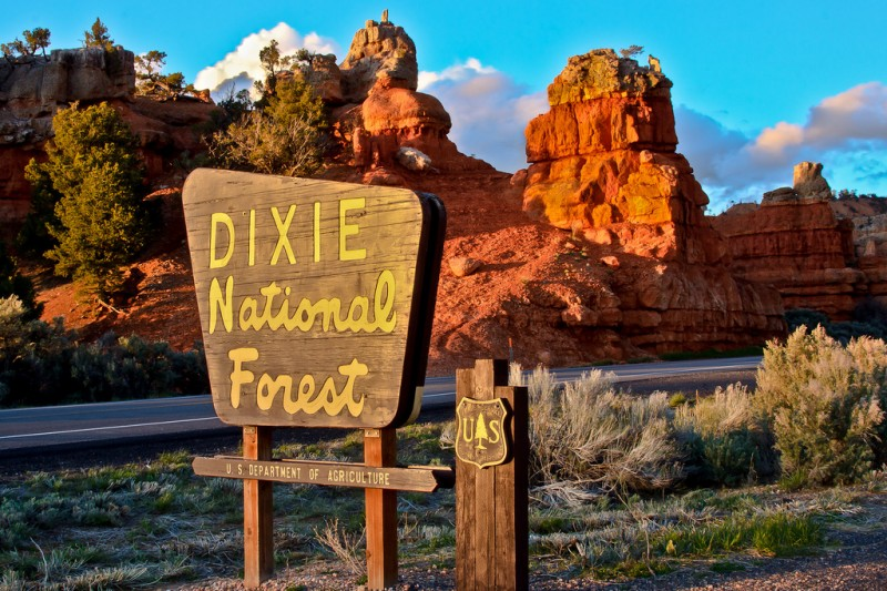 Posey Lake Campground Dixie National Forest Dixie Ut