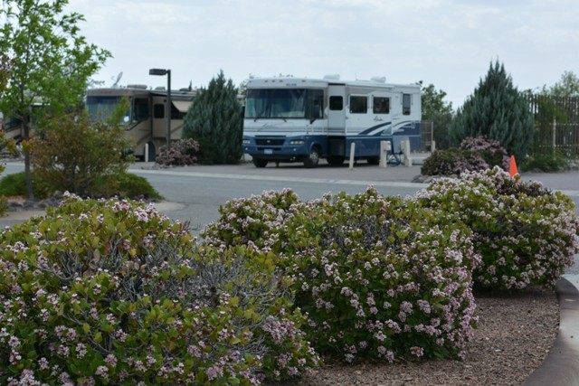 Hacienda Rv Resort LLC - Las Cruces, NM - RV Parks
