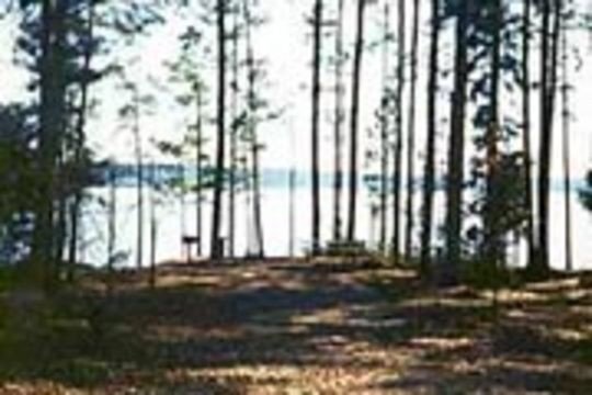 Piney Grove Campground Booneville Ms Rv Parks