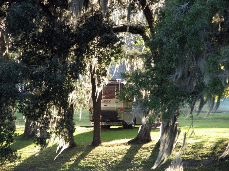 Belle Parc RV Resort - Brooksville, FL - RV Parks