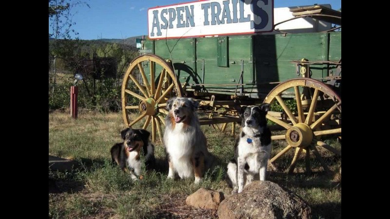 Aspen Trails Campground - Cedaredge, CO - RV Parks