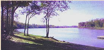 Chattahoochee Rv Campground & Fishing Resort - Chattahoochee, FL - RV Parks