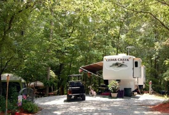 Forest Lake RV & Camping Resort - Advance, NC - Thousand Trails Resorts