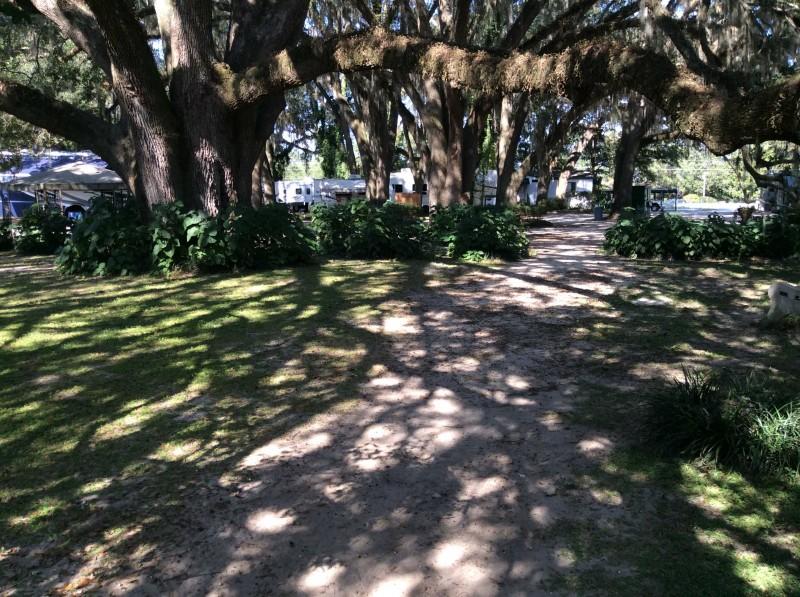 Big Oak RV Park - Tallahassee, FL - RV Parks
