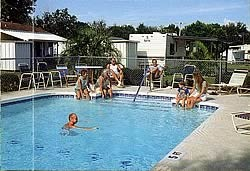 Sherwood Forest RV Resort - Palm Harbor, fl - RV Parks