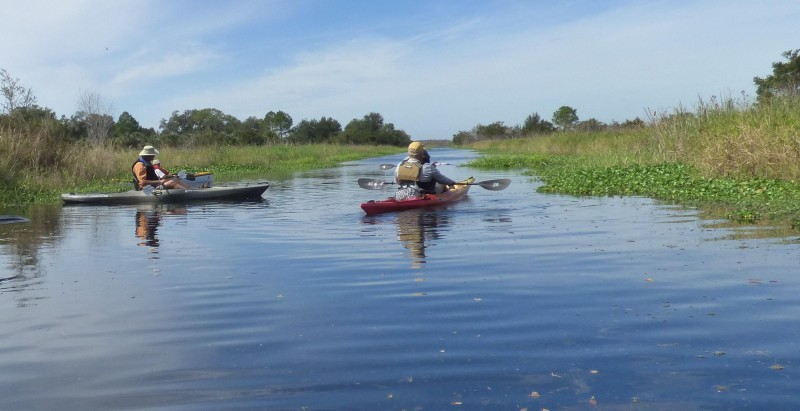 Port Hatchineha Campground and Boat Ramp - Haines City, FL - County / City Parks