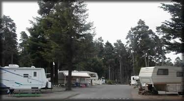 Fort Bragg Leisure Time Park - Fort Bragg, CA - RV Parks