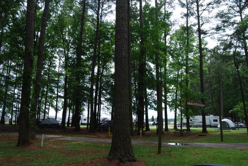 Chesapeake Campground - Chesapeake, VA - RV Parks