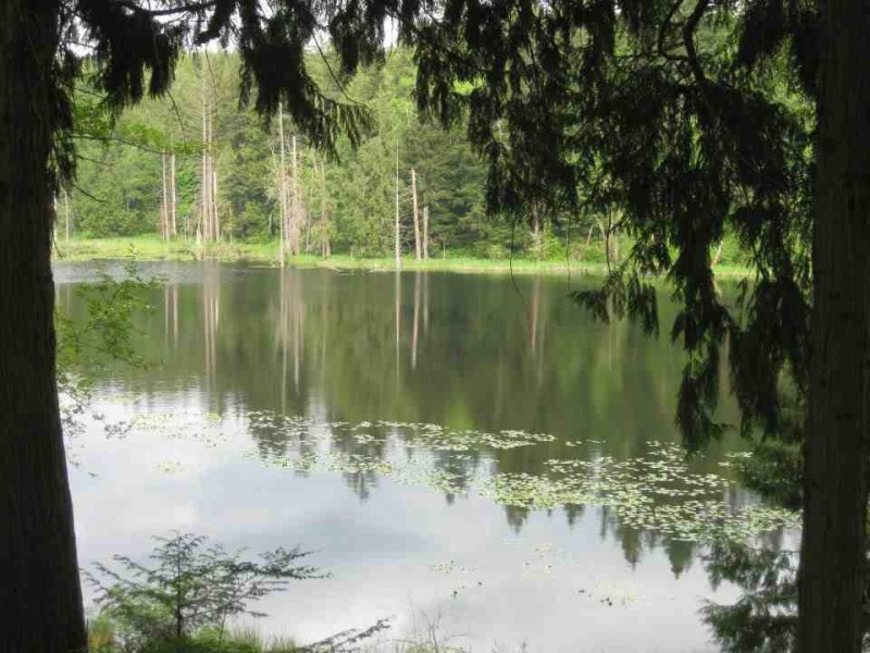 Lake Connor Park Lake Stevens Wa Rv Parks Rvpoints Com