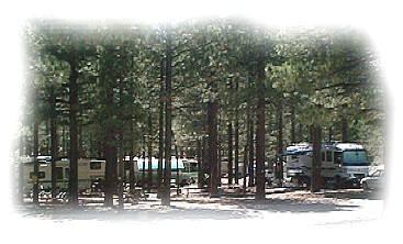 Pine Cliff RV Resort - June Lake, CA - RV Parks