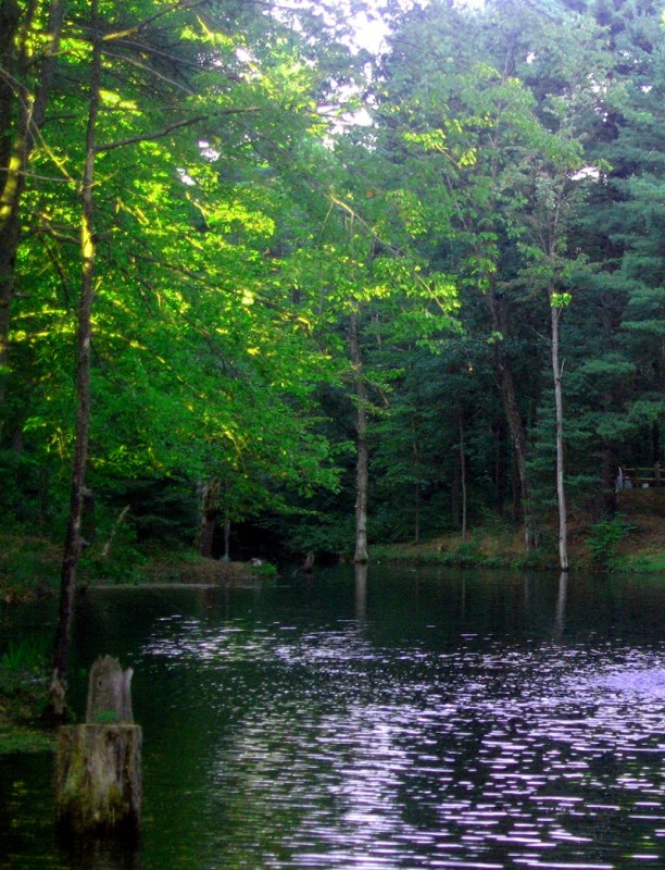Adirondack Gateway Recreation Destination - Gansevoort, ny - RV Parks