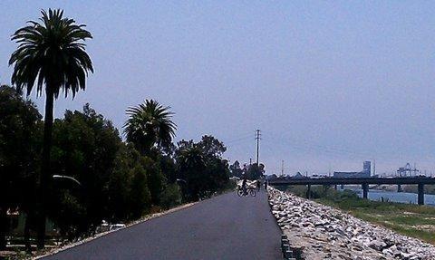 Golden Shore RV Resort - Long Beach, CA - RV Parks