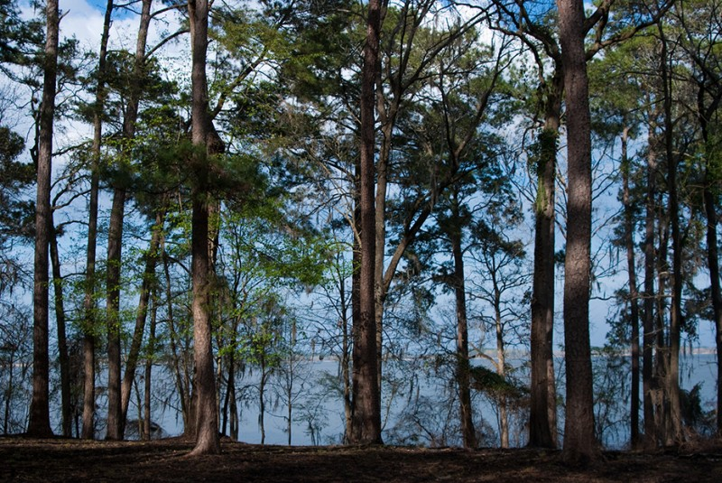 Three Rivers State Park - Sneads, FL - Florida State Parks