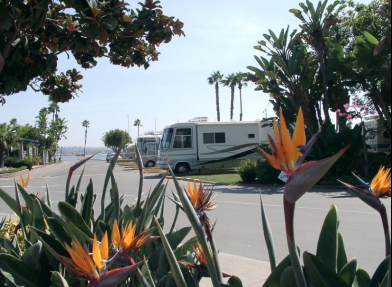 Campland On The Bay San Diego Ca Rv Parks Rvpoints Com