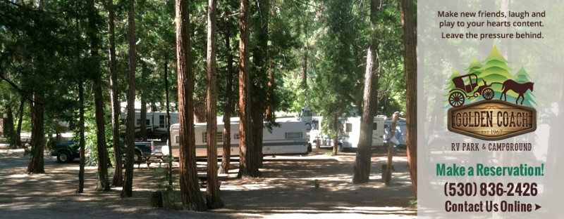 Golden Coach Rv Resort - Cromberg, CA - RV Parks