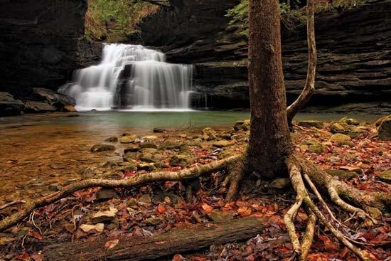 Clear Creek Recreation Area William B Bankhead National
