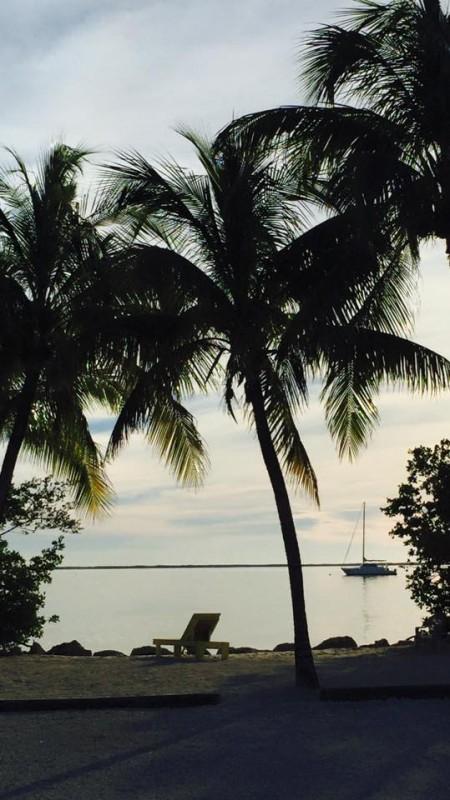 Captain Jax RV Resort and Marina  - Key Largo, FL - RV Parks