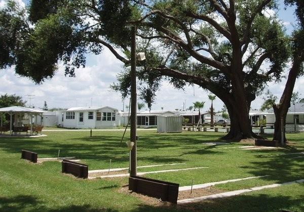 Big Tree Rv Park - Arcadia, FL - RV Parks