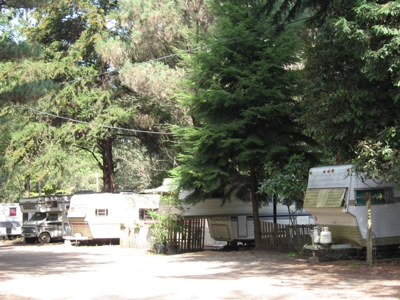 Wildwood Rv Park & Campground - Fort Bragg, CA - RV Parks