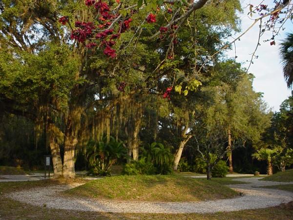 Koreshan State Historic Site - Estero, FL - Florida State Parks