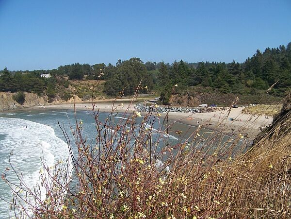 Caspar Beach Rv Campground - Mendocino, CA - RV Parks