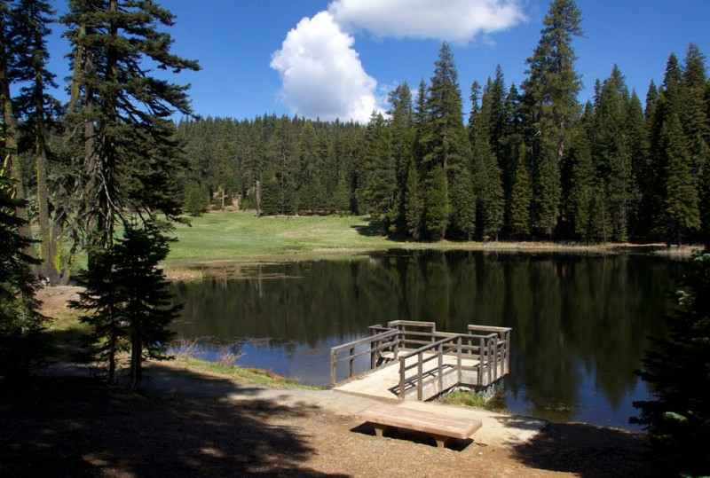 Sycamore Grove Campground, Mendocino National Forest - Red Bluff, CA - National Parks