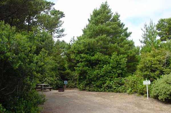 Heceta Beach RV Park - Florence, OR - RV Parks