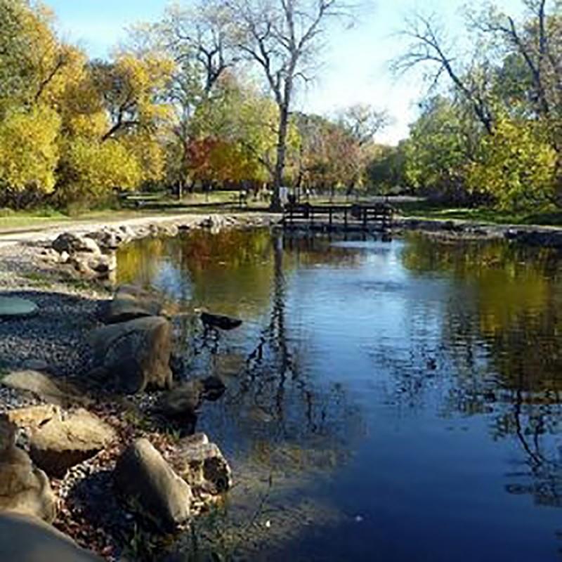 Lake Solano County Park - Winters, CA - County / City Parks