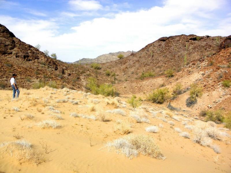 Desert Pueblo RV Resort - Bouse, AZ - RV Parks