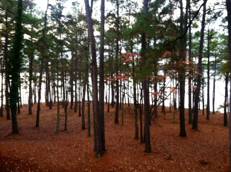Hickory Knob State Resort Park - McCormick, SC - South Carolina State Parks