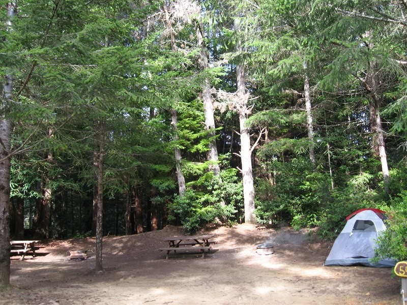 Wildwood Rv Park & Campground - Fort Bragg, CA - RV Parks