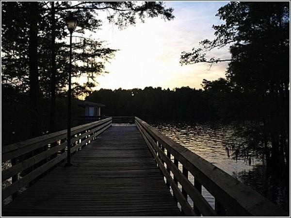 Santee State Park - Santee, SC - South Carolina State Parks
