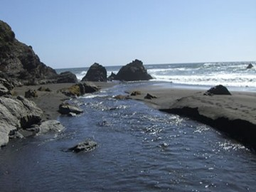 Westport Beach Campground - Westport, CA - RV Parks