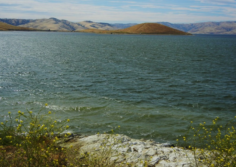 San luis reservoir state recreation area gustine ca for San luis reservoir fishing