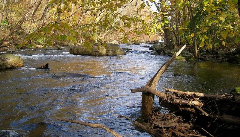 Albocondo Campground - Toms River, NJ - RV Parks