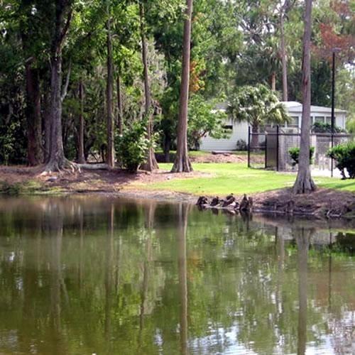 Sherwood Forest RV Resort - Kissimmee, FL - Encore Resorts