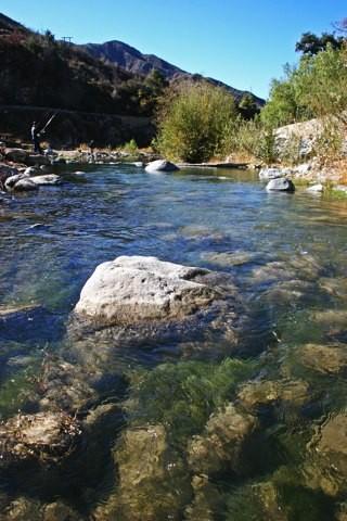 Camp Williams Resort - Azusa, CA - RV Parks